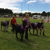 75th Waiau Annual Show