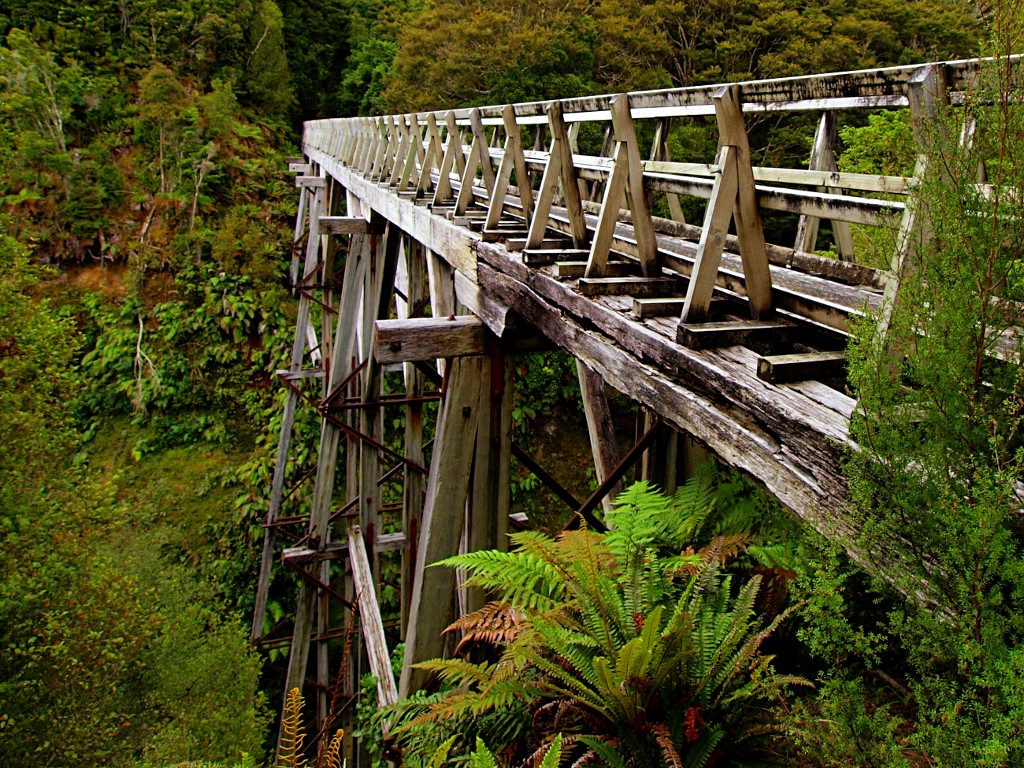 Hump Ridge Track ~ Viaduct